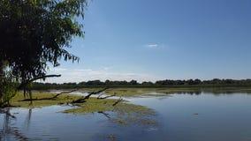 在多瑙河三角洲的湖风景 图库摄影