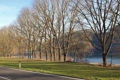 在多瑙河在冬天,奥地利 免版税库存照片