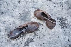 在多瑙河的两双鞋子 免版税库存照片