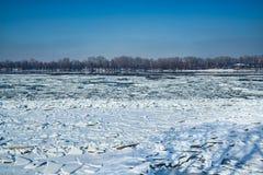 在多瑙河的冰 免版税库存图片