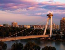 在多瑙河的桥梁 库存照片