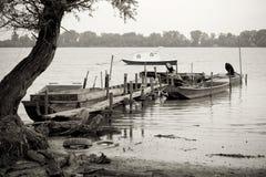 在多瑙河的渔船 免版税库存图片