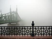 在多瑙河的薄雾 库存照片