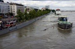 在多瑙河的水位高在布拉索夫,斯洛伐克 免版税图库摄影