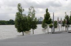 在多瑙河的水位高在布拉索夫,斯洛伐克 免版税库存图片