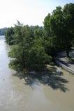 在多瑙河的洪水 免版税库存照片