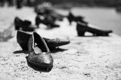 在多瑙河银行的鞋子 库存照片