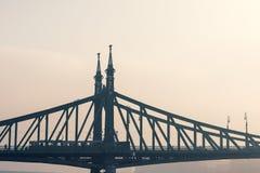 在多瑙河,布达佩斯的自由桥梁 图库摄影