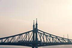 在多瑙河,布达佩斯的自由桥梁 库存照片