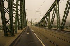 在多瑙河,布达佩斯,匈牙利的自由桥梁 库存图片