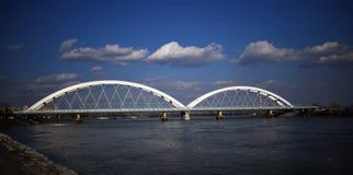 在多瑙河,诺维萨德的桥梁 免版税库存照片