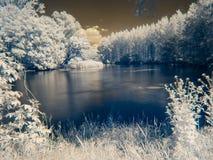 在多瑙河` s洪泛区的红外看法 库存照片
