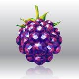 在多角形样式的野生森林莓果 库存照片