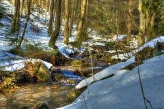 在多雪冬天森林流动的小河(HDR) 免版税库存照片