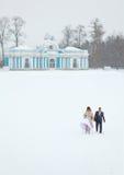 在多雪的域中间的已婚夫妇 库存照片