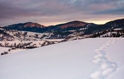 在多雪的山坡的小径在日出的山 图库摄影