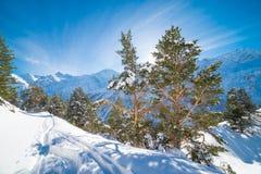 在多雪的山的冬日风景 免版税库存图片