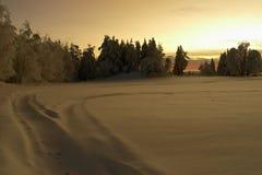 在多雪的日落的乡下 图库摄影