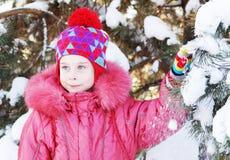 在多雪的杉树附近的小女孩在公园分支 库存图片
