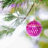 在多雪的树的桃红色圣诞节装饰品 图库摄影