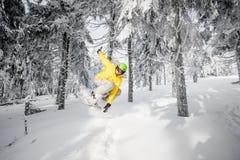 在多雪的森林里供以人员乘坐一个雪板 库存照片