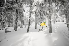 在多雪的森林里供以人员乘坐一个雪板 图库摄影