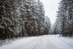 在多雪的森林风景的冬天路 免版税库存照片