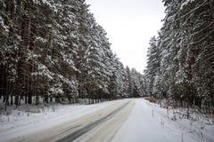在多雪的森林风景的冬天路 免版税库存图片