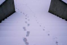 在多雪的楼梯的脚印刷品 免版税图库摄影