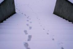在多雪的楼梯的脚印刷品 库存图片