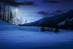 在多雪的草甸的树山的在晚上 库存照片