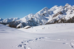 在多雪的道路的游览 免版税库存照片