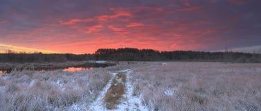 在多雪的领域上的明亮的红色云彩 图库摄影