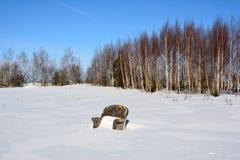 在多雪的领域中间的一把偏僻的椅子在桦树背景和蓝天在冬天-认为创造性 免版税库存照片