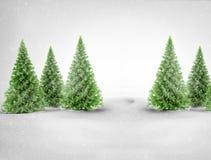 在多雪的风景的圣诞树 免版税库存照片
