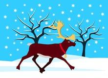 在多雪的风景的驯鹿 免版税库存照片