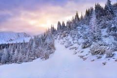 在多雪的Tatra山的冻结的冬天日出 库存照片