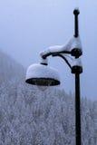 在多雪雪风暴转动的风景的积雪的路灯柱 免版税图库摄影