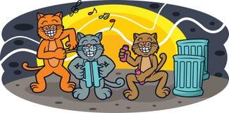 在夜动画片的滑稽的猫带音乐会 库存照片