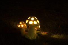 在夜庭院的灯 库存图片