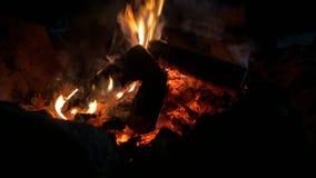 在夜火焰的篝火 影视素材