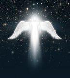 在夜空的天使 库存照片