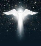 在夜空的天使 免版税库存图片
