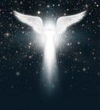 在夜空的天使 库存图片