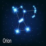 在夜空的星座猎户星座星。 免版税库存照片