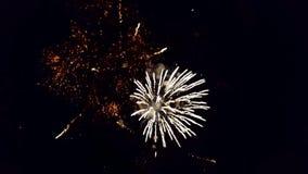 在夜空的欢乐致敬 烟花爆炸  影视素材