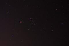 在夜空的猎户星座星 免版税库存图片