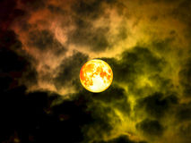 在夜空的纯种月亮 库存照片