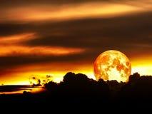 在夜空的血液月亮月蚀 库存照片