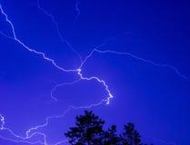 在夜空的闪电在树梢上 库存图片